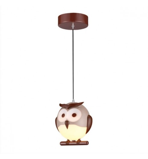 Owl 243