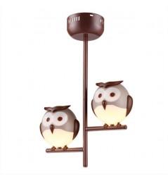 Owl 244